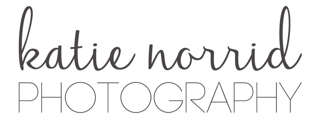 Tennessee Wedding and Portrait Photographer logo